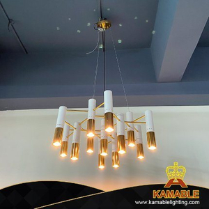 Living Room Lighting Stainless Steel Pendant Lamp (PT302)