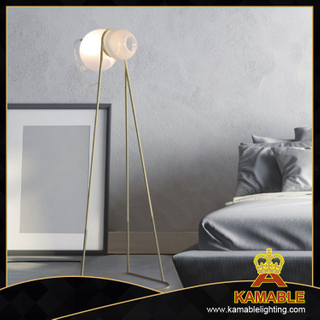 Modern Home Lighting Glass Shade Floor Lamp (ML8151-1)